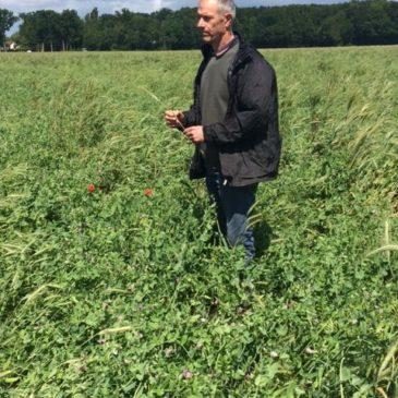 Retour sur notre visite chez Thierry Legris, céréalier et producteur de potimarrons.