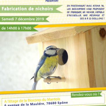 Atelier de fabrication de nichoirs