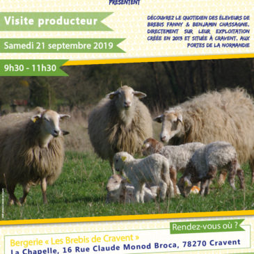 Visite producteur : Fanny & Benjamin Chassagne «Les Brebis de Cravent