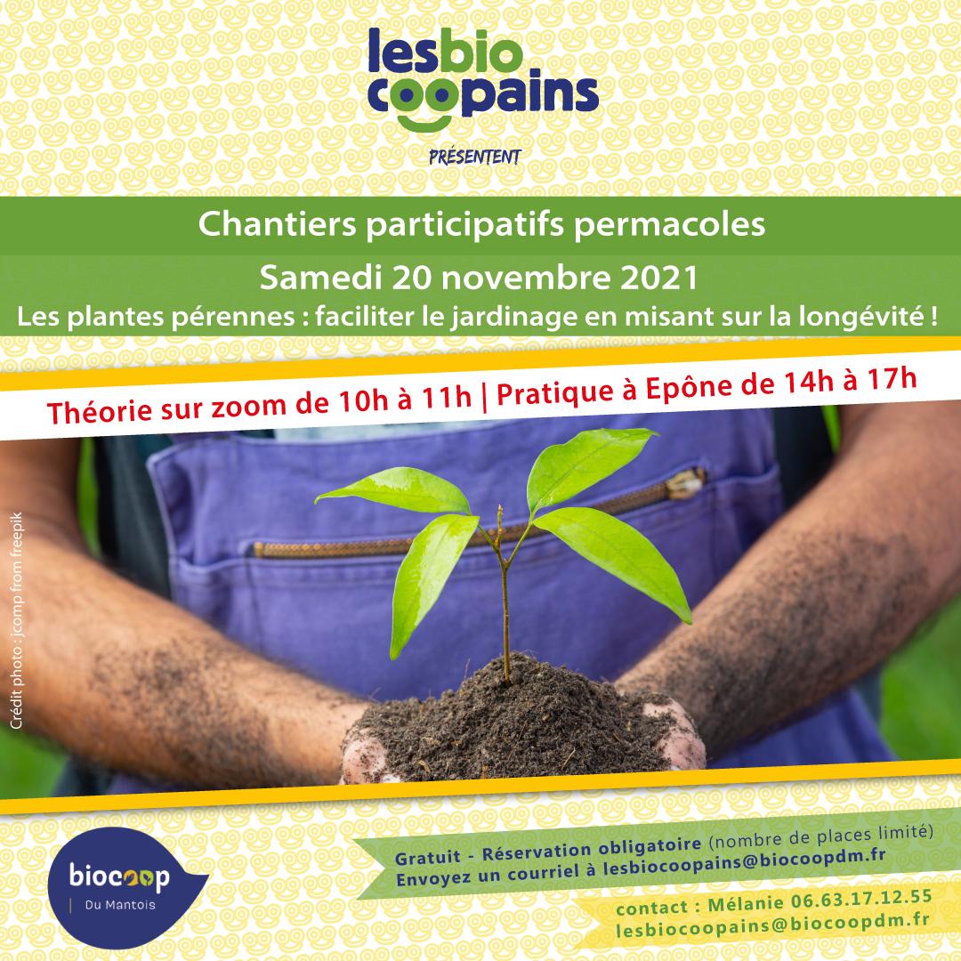 Chantier participatif permacole n°14 sur les plantes pérennes, le samedi 20 novembre 2021